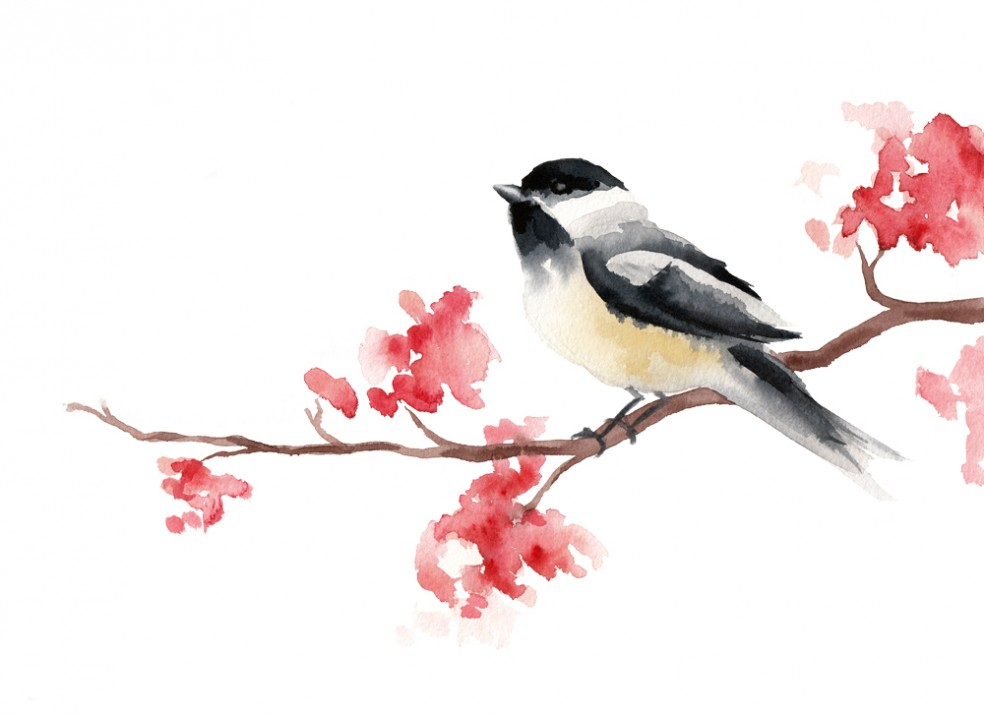 Chickadee | Watercolor Painting | Tracey Cameron Creative