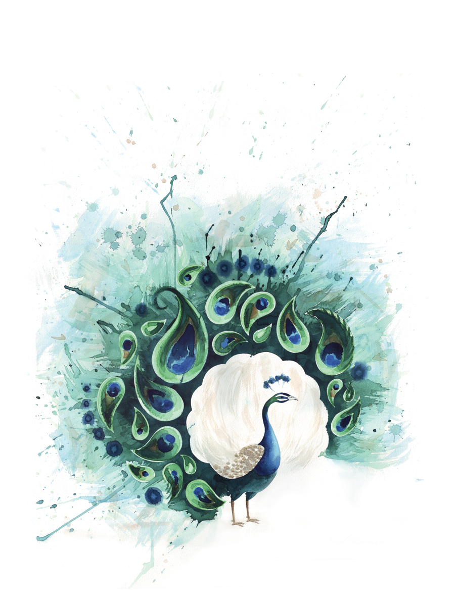 Circle Peacock | Tracey Cameron Creative