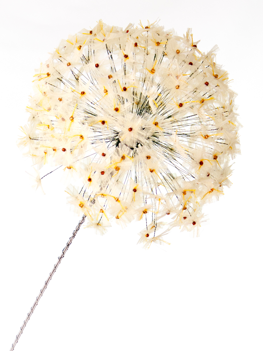 Light Yellow Allium Bloom Close Up | Fibre Sculpture | Tracey Cameron Creative