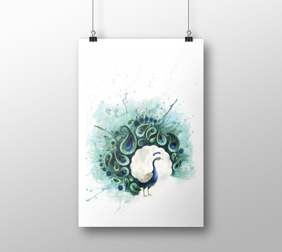 Tracey Cameron Creative | Peacock II Art Print